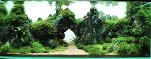 Difficult Plants To Grow by Best Aquascapes Of 2014 Aquarium Info