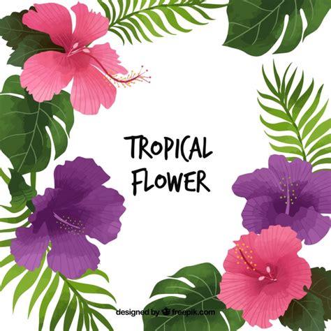 imagenes de flores exoticas para descargar fondo bonito de flores tropicales y hojas descargar
