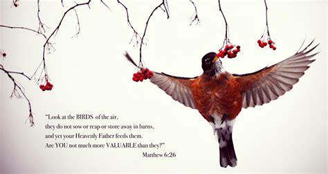 Look At The Calendar Matthew 6 26 Salvation Factory