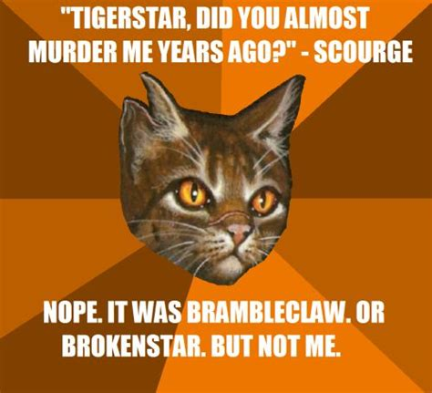 Warriors Memes - 24 best images about funny warrior cats on pinterest