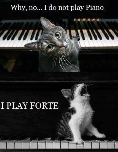 Piano Memes - 25 best ideas about music jokes on pinterest band jokes