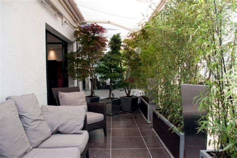 Plants For Living Room bamboo balcony privacy screen ideas with plants carpets