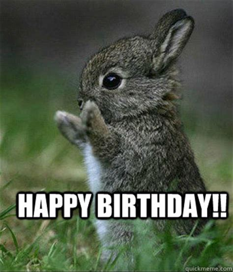 Cute Birthday Meme - bunny birthday meme funny happy birthday meme
