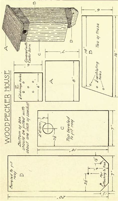 woodpecker house plans woodpecker house plans house plans home designs