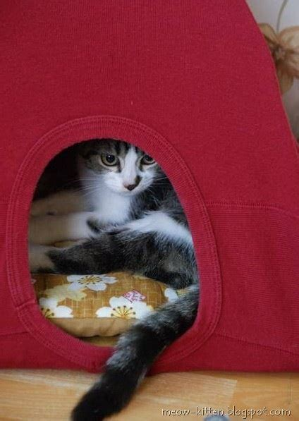 Tshirt Cat Lh 2 Easy 3 Steps To Diy Cat Tent With Your T Shirts Meow