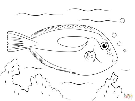 exotic fish coloring pages tropical fish coloring pages free printable pictures