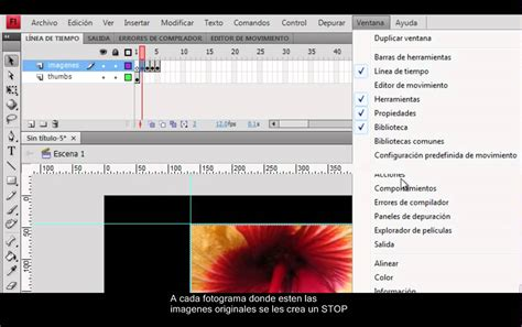 tutorial flash cs4 pdf tutorial creaci 243 n galeria de imagenes en flash cs4 youtube