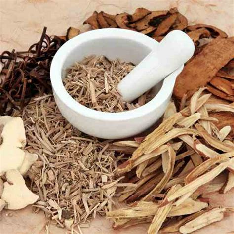 traditional medicine enhance your health with traditional medicines mind and