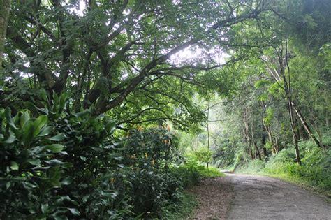 berwisata alam  taman hutan raya djuanda situs budaya