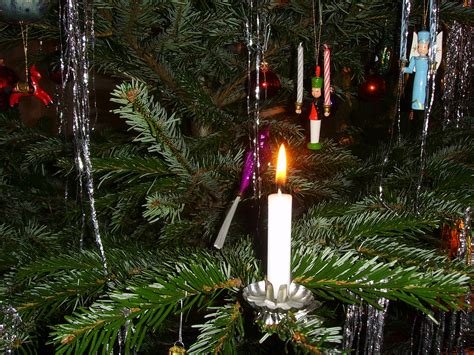 file candle on christmas tree 7 jpg wikimedia commons