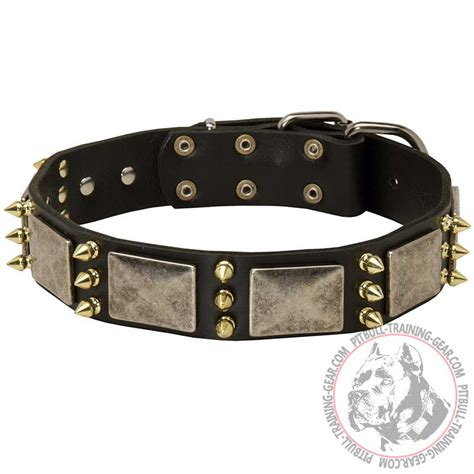 Leather Pit Buy Decorated Leather Pitbull Collar Designer