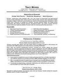 sle of a resume careerperfect 174 sales management sle resume