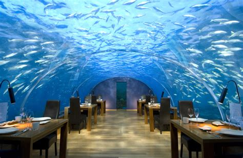 ithaa undersea restaurant five most interesting restaurants more than shipping