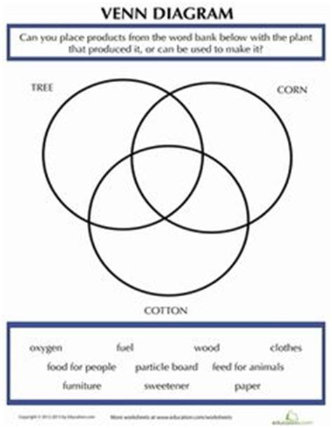 our 5 favorite prek math worksheets plant cycles