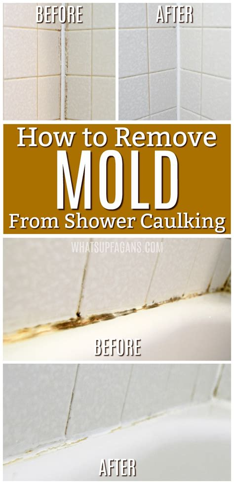 how to remove musty smell from bathroom what s up fagans