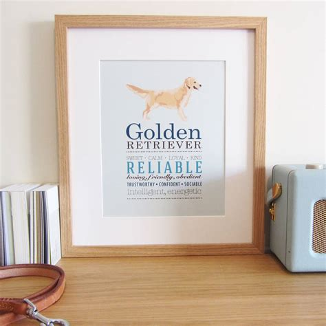 golden retriever original breed golden retriever breed print by sirocco design notonthehighstreet