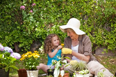 Summer gardening tips for beginners   Wadsworth Community