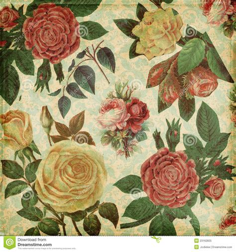 botanical print wallpaper vintage botanical wallpaper wallpaperhdc com