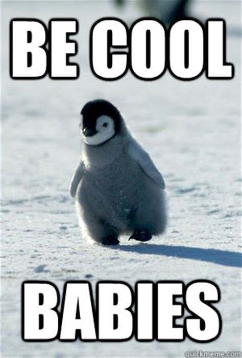 Penguin Meme - penguins with funny captions memes