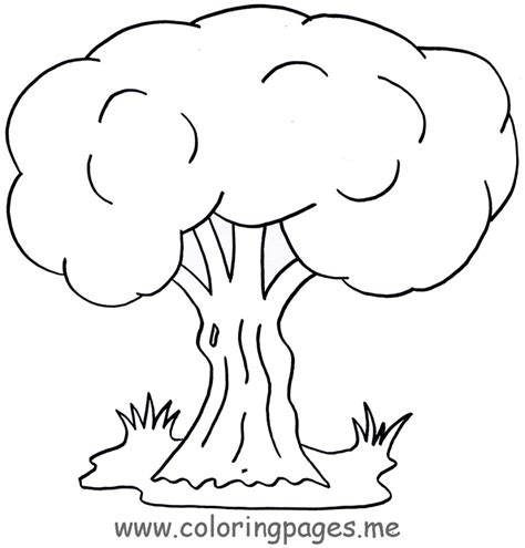 tree to color coloring pages free coloring pages of a tree to colour