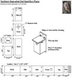 northern saw whet owl nest box plans for the birds - Owl House Plans