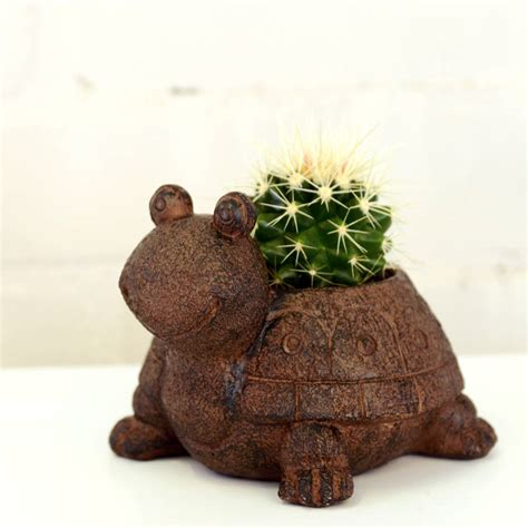 turtle planter turtle planter with a plant by dingading terrariums notonthehighstreet com