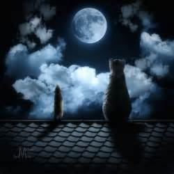 Love and full moon november 2014 autos post