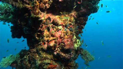 Underwater Garden by The Underwater Gardens
