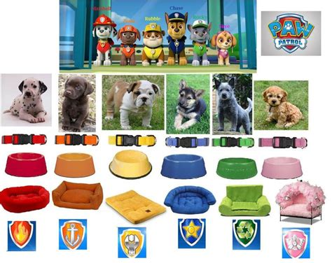 what of is rocky from paw patrol i could collect all the breeds in paw patrol i don t what of mixed breed