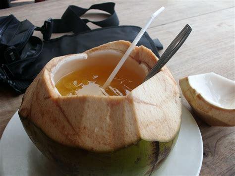 kelapa hijau kasiat dan cara penggunaannya problem resep es degan jeruk kelapa muda segar selviapriani20