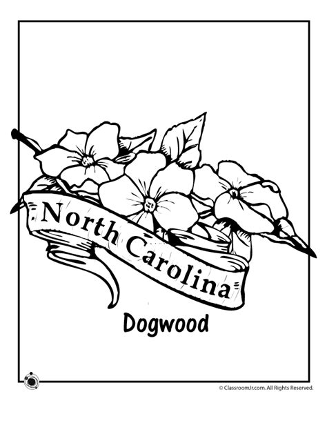 How To Draw The Outline Of Carolina by Carolina State Flower Coloring Page Woo Jr Activities
