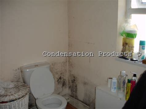 how to stop condensation on bathroom walls how do i know i have a condensation problem homedry