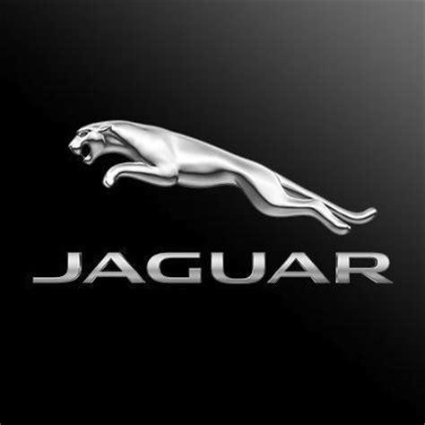 jaguar schweiz jaguar schweiz jaguarschweiz