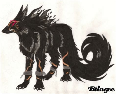 5 11 Black Wolf Black black and white wolf