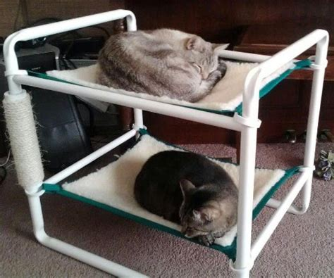cat bunk beds for sale rover company raised cat bunk hammock pet bed green trim