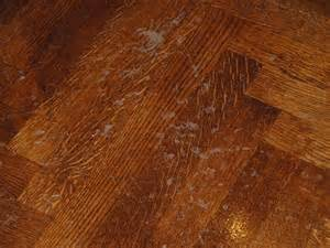 floor design on the eye how to refinish wood floors step