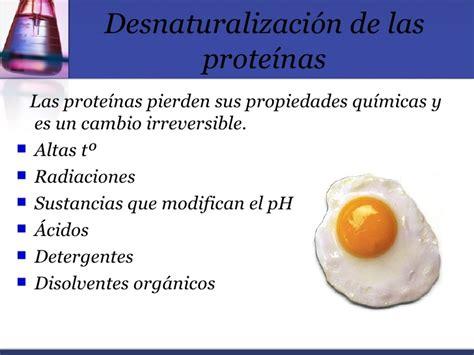 cadenas polipeptídicas que es desnaturalizacion de las proteinas epub download