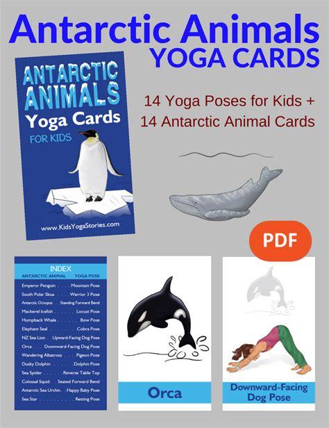 printable animal yoga cards antarctic animals yoga cards for kids pdf download kids
