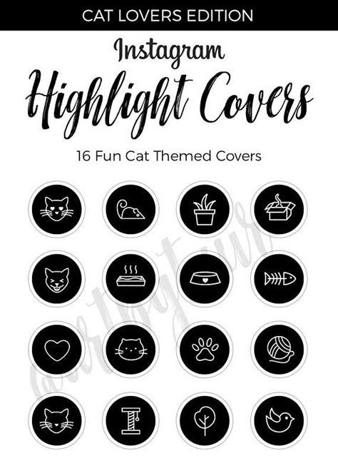 instagram highlight covers black highlight covers cat