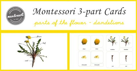 montessori printables uk 29 best montessori printables images on pinterest