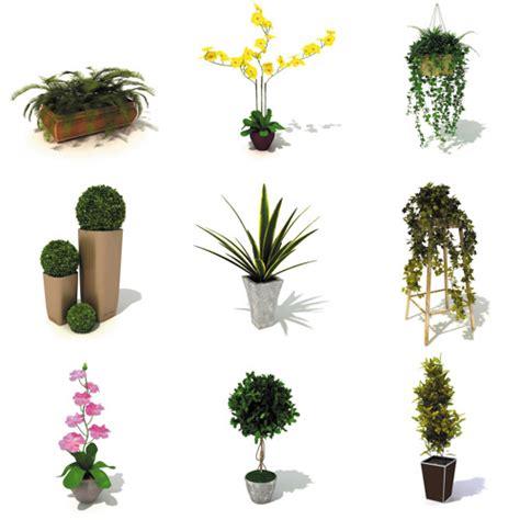 plant indoor dosch design dosch 3d indoor plants