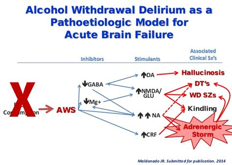 Kindling Detox by Neurobiology And Treatment Of Withdrawal