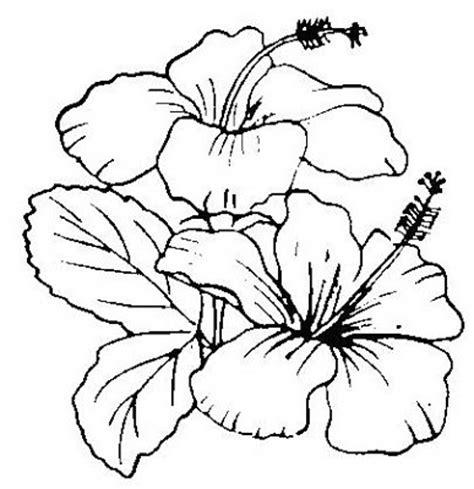 gambar bunga raya hitam putih gambar bunga melati kartun apps directories