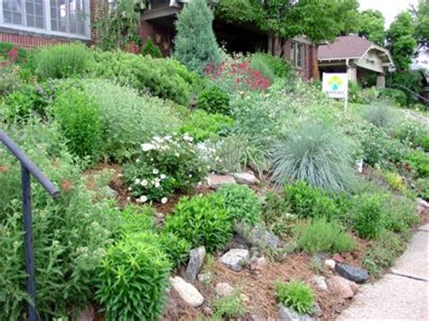 139 best images about gardening on a slope on pinterest