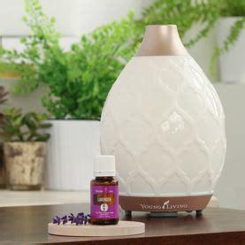 Living Desert Mist Diffuser living essential oils diffuser www pixshark
