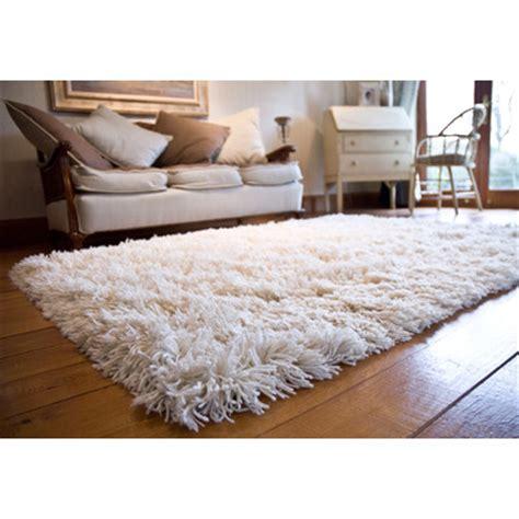 Shag Living Room Rug by Best 25 Shag Rug Ideas On Rugs In