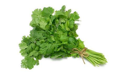 Organic Parsley organic parsley per kilo earthorigins marketplace