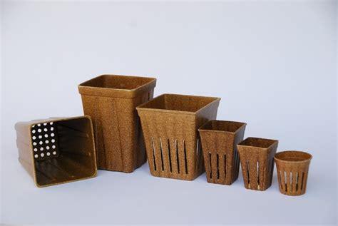 vasi biodegradabili la seconda vita riso il progettista industriale