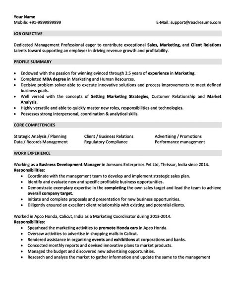 resume format for year experience sales and marketing resume sle for 2 years experience