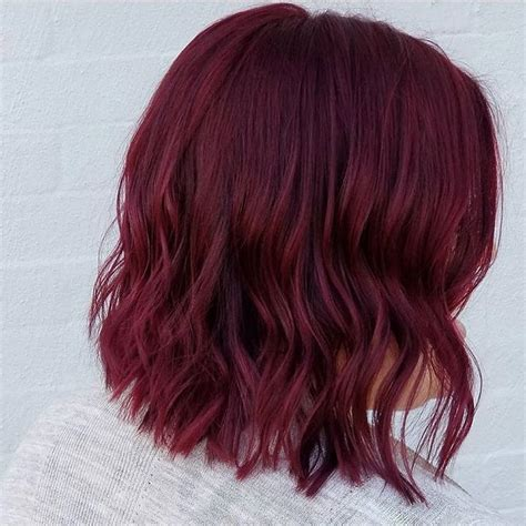 wine color hair best 25 wine colored hair ideas on wine